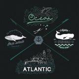 Reeks uitstekende zeevaartemblemen, ontwerpelementen Marine Image: walvis, water, oceaan, vuurtoren, zeegezicht Royalty-vrije Stock Afbeeldingen