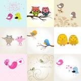 Reeks van 9 valentijnskaartenkaarten met leuke vogels Stock Fotografie