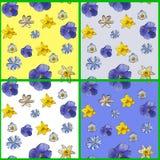 Reeks van abstract naadloos patroon met bloemen van pansyes Stock Fotografie