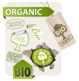Reeks van bio, eco, organische elementen Royalty-vrije Stock Afbeeldingen