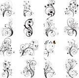 Reeks van bloemenelementenvector Royalty-vrije Stock Afbeeldingen