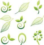 Reeks van bomen en blad. Royalty-vrije Stock Foto's