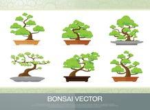 Reeks van bonsaiinstallatie in de potten vlakke stijl Royalty-vrije Stock Foto