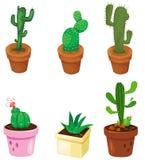 Reeks van cactus vector illustratie