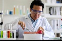 Reeks van Chemische buisontwikkeling en apotheek in laboratorium, bioc stock afbeelding