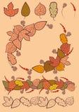 Reeks van de decoratie van de herfstbladeren. Stock Foto