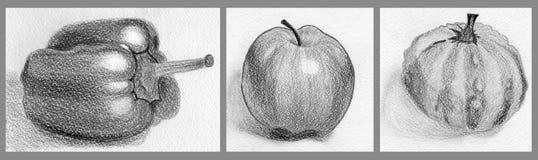 Reeks van de herfst het schetsen Stock Afbeelding