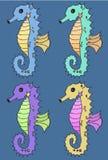 Reeks van de Seahorse de vectorillustratie Royalty-vrije Stock Foto