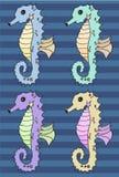 Reeks van de Seahorse de vectorillustratie Stock Fotografie