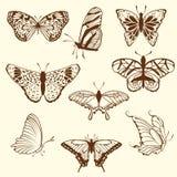 Reeks van de vlinder van de differnetschets Stock Afbeeldingen