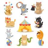 Reeks van de vrolijke vectorillustratie van circus speelkatten stock illustratie