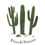 Reeks van drie de leuke cactus van beeldverhaalsaguaro Vrienden voor altijd tekst vector illustratie