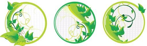 Reeks van drie groene bloemenkaarten Stock Foto