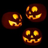 Reeks van drie Jack-o'-lanterns pompoenen Stock Fotografie