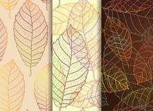 Reeks van drie mooie bladeren naadloze patronen stock illustratie
