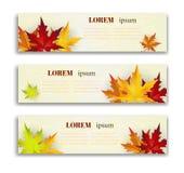 Reeks van drie vectorbanners met kleurrijke de herfstbladeren Stock Fotografie