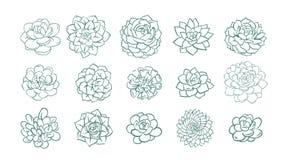 Reeks van en getrokken lijn succulente die installatie op witte achtergrond wordt geïsoleerd Vector illustratie royalty-vrije illustratie