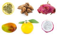 Reeks van exotische vruchten het fruitmandarijn van de mangadraak met groene bladerenptokhaya en de helft van gele passievrucht royalty-vrije stock foto