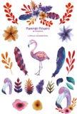 Reeks van flamingo stock illustratie