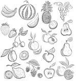 Reeks van fruit en bessen Tekeningsschets Royalty-vrije Stock Fotografie