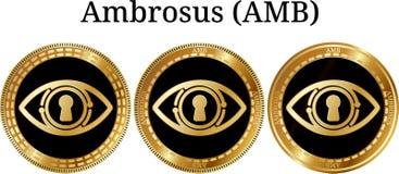Reeks van fysiek gouden muntstuk Ambrosus AMB Royalty-vrije Stock Afbeelding