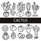 Reeks van geïsoleerde cactus en succulents in zwart overzicht Vector stock illustratie
