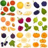Reeks van geheel en gesneden fruit Vector illustratie royalty-vrije illustratie