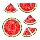 Reeks van geheel, half en plakken van watermeloen in een besnoeiing op een wit royalty-vrije illustratie