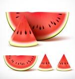 Reeks van gesneden rijpe rode watermeloen in 3d realistische gedetailleerde vector royalty-vrije illustratie