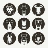 Reeks van gestileerde dierlijke avatar Stock Afbeeldingen