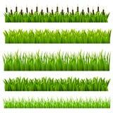 Reeks van gras Stock Foto