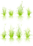 Reeks van gras stock illustratie