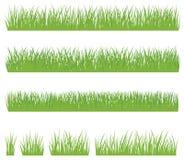 Reeks van groen die gras op witte achtergrond wordt geïsoleerd Royalty-vrije Stock Foto's