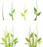 Reeks van groen gras stock illustratie