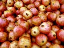 Reeks van groot fruit. Rijpe granaatappels Royalty-vrije Stock Fotografie