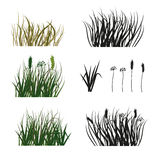 Reeks van hand getrokken die silhouet van gras op witte achtergrond wordt geïsoleerd Stock Fotografie