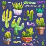 Reeks van hand getrokken geïsoleerde cactus Watercolourillustratie vector illustratie