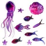 Reeks van hand getrokken vectorwaterverf onderwatervissen en octopus De artistieke Elementen van het Ontwerp Stock Afbeelding