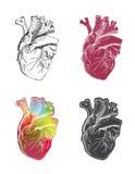 Reeks van hart Stock Foto's