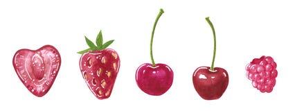Reeks van hart-vormige tuin rode bessen, en ronde, waterverfillustratie vector illustratie
