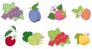 Reeks van helder fruit, samenvatting vector illustratie