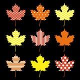 Reeks van het blad van de de herfstesdoorn vector illustratie