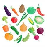 Reeks van het groenten de Vectorpictogram royalty-vrije illustratie