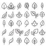 Reeks van het pictogram van de bladlijn Royalty-vrije Stock Afbeeldingen