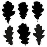 Reeks van het vectoroverzicht van zwarte eikbladeren vector illustratie