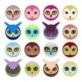 Reeks van Kleurrijk Owl Heads Stock Fotografie