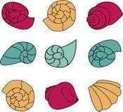 Reeks van kleurrijke shell op witte achtergrond stock illustratie