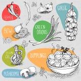 Reeks van krijt op een bordvoedsel wordt getrokken, kruiden dat Royalty-vrije Stock Afbeelding