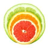 Reeks van kruis citrusvruchten Stock Afbeeldingen