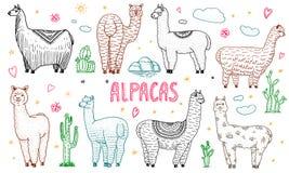 Reeks van leuke Alpacalama's of wilde guanaco op de achtergrond van Cactus en berg Grappige het glimlachen dieren in Peru voor stock illustratie